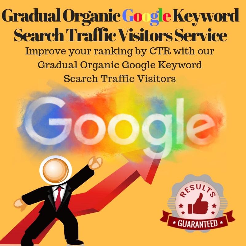[Legiit Exclusive] Organic Google Keyword Search Traffic Visitors Service